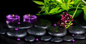 Spa concept of flower orchid, phalaenopsis, zen basalt stones wi — Stock Photo