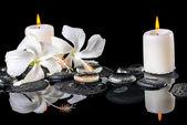 Beautiful spa still life of delicate white hibiscus, zen stones  — Foto Stock