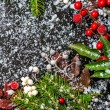 Winter card of evergreen branches, red leaves and berry with sno — Stock Photo #60214827