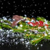 Winter card of evergreen branches, red leaves and berry with sno — Stock Photo