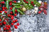 Christmas card of evergreen branches, red leaves, berry with sno — Stock Photo