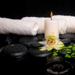 ������, ������: Spa setting of passiflora flower green branch fern and candle o