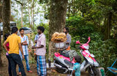 Munnar, India - 18 febbraio 2013: Un popolo non identificato sono ga — Foto Stock