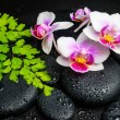 Spa background of white with red orchid (mini phalaenopsis) flow — Stock Photo #62981291