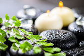 Beautiful spa background of green twig fern, ice and candles on  — Stock Photo