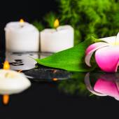Beautiful spa concept of green leaf calla lily, plumeria with dr — Stock Photo