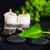 Spa concept of green leaf Calla lily, foliage and candles on zen — Stock Photo
