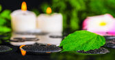 Spa concept of hibiscus leaf, plumeria flower, green branch and — Stock Photo