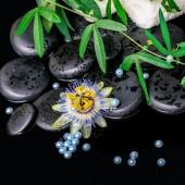 Spa bakgrund av passiflora blomma, grenar, handdukar, zen basala — Stockfoto