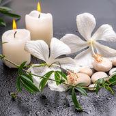 Beautiful spa still life of delicate white hibiscus, twig passio — Stock fotografie
