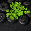 Beautiful spa concept of green twig Adiantum fern on zen basalt — Stock Photo #65464599