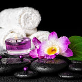 Spa concept of orchid flower, zen basalt stones with drops, purp — Stock Photo