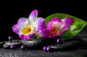 Spa still life of purple orchid dendrobium, green leaf Calla lil — Стоковое фото