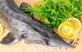 Top down of fresh raw sturgeon fish with greens, lemon, differen — Stock Photo