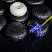 Beautiful spa concept of blooming iris flower, candle and black — Stock Photo