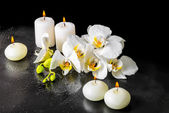 Beautiful spa still life of blooming white orchid flower, phalae — Stock Photo