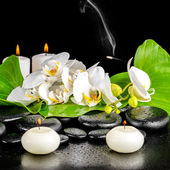 Spa concept of orchid flower, phalaenopsis, leaf with dew, candl — Stock Photo