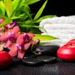 Spa concept of blooming twig red orchid flower, phalaenopsis, ba — Stock Photo #71837497