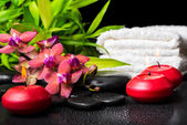 Spa concept of blooming twig red orchid flower, phalaenopsis, ba — Stock Photo