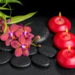 Beautiful spa setting of twig red orchid flower, phalaenopsis, b — Stock Photo #74124425