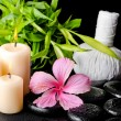 Spa still life of pink hibiscus flower, twig bamboo, thai herbal — Stock Photo #74123621