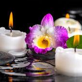 Spa concept van paarse orchidee dendrobium, blad met dauw en candl — Stockfoto
