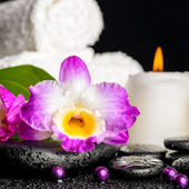 Spa background of purple orchid dendrobium, leaf with dew, towel — Stock Photo