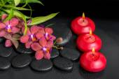 Beautiful spa setting of twig red orchid flower, phalaenopsis, b — Stock Photo