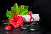 Beautiful spa still life of red hibiscus flower with dew, candle — Stock Photo