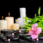 Spa composition of hibiscus flower, bamboo, thai herbal compress — Stock Photo
