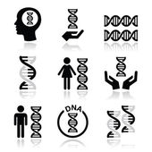 Human DNA, genetics vector icons set — Stock Vector