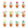 Flower, plant in pot vector icons set — Stock Vector #65980219