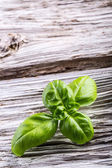 Basil leaves pepper and pasta on a old wooden table — Foto de Stock