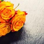 Orange rose. Yellow rose. Several orange roses on Granite background — Stock Photo #72496863