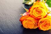 Orange rose. Yellow rose. Several orange roses on Granite background — Stock Photo