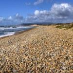 Постер, плакат: Beach rolling stones