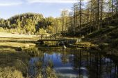 Devero Alp, reflections in the river in autumn season — Stock Photo