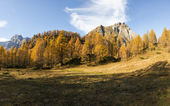 Devero Alp, colors of autumn season — Stock Photo