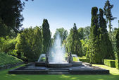 Fountain and meadow in summer — Stock Photo