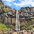 Famous Svartifoss waterfall in Skaftafell National Park, Iceland — Zdjęcie stockowe #58673691