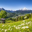 Idyllic mountain landscape in the Alps — Stock Photo #58674813
