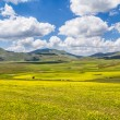 Summer landscape at Piano Grande mountain plateau, Umbria, Italy — Stock Photo #58675245