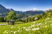 Idyllic mountain landscape in the Alps — Stock Photo