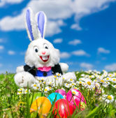 Colorful Easter eggs with funny Easter bunny lying in grass — Stock Photo