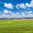 Scenic Tuscany landscape with rolling hills in Val d'Orcia, Italy — Stock Photo #68473499