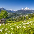 Idyllic mountain landscape in the Alps with traditional mountain lodge in springtime — Stock Photo #68476349