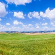 Scenic Tuscany landscape with rolling hills in Val d'Orcia, Italy — Stock Photo #68478963