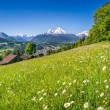 Beautiful mountain landscape in the Alps with fresh green mountain pastures in springtime — Stock Photo #68480203
