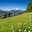 Panoramic view of beautiful landscape in the Bavarian Alps with beautiful flowers and famous Watzmann mountain in the background in springtime, Nationalpark Berchtesgadener Land, Bavaria, Germany — Stock Photo #78679248