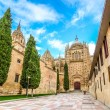 Beautiful view of Cathedral of Salamanca, Castilla y Leon region, Spain — Stock Photo #79028370